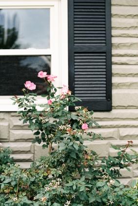 Homesteading_Lifestyle_Blog-29