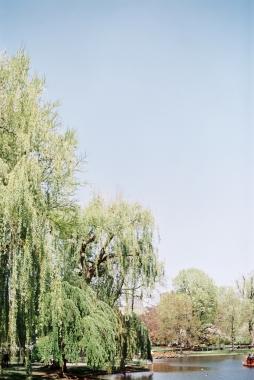 Boston_Trip_Film_Photography-1