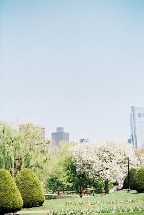 Boston_Trip_Film_Photography-3