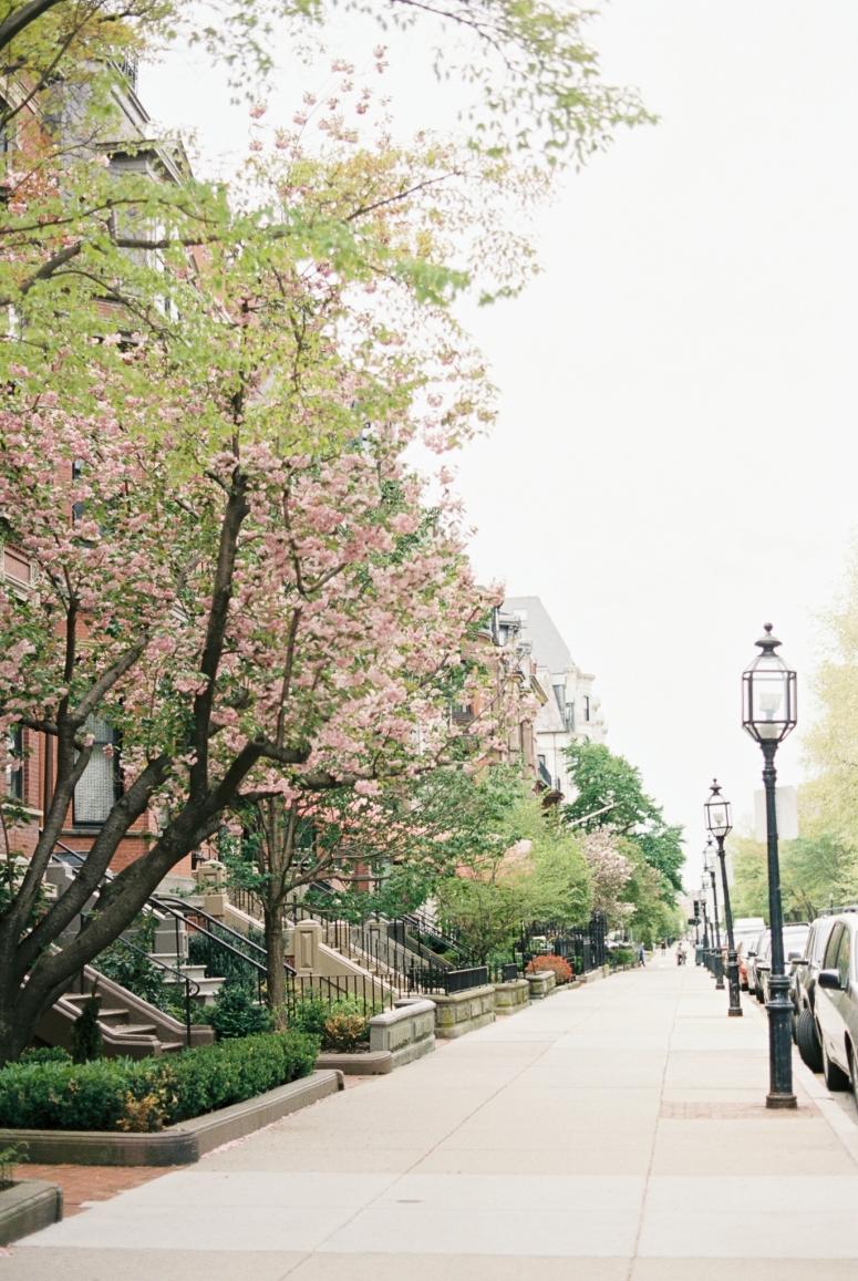 Boston_Trip_Film_Photography-44