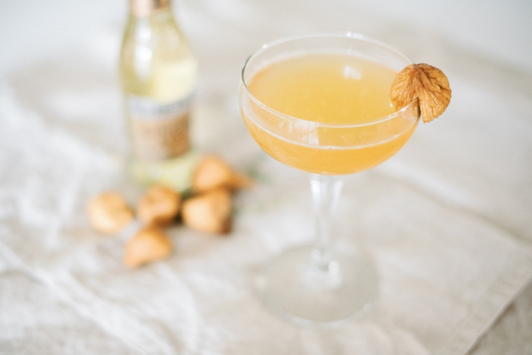 Fig_Thyme_Apple_Cider_Fall_Mocktail_Zero_Proof_Dahlia_Homestead-5